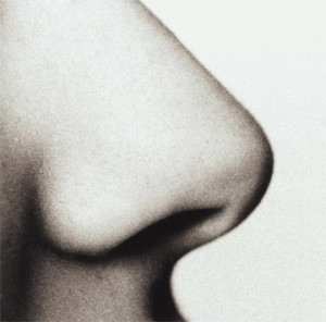 Rhinoplasty (Nose Job Surgery) New York | Mahattan