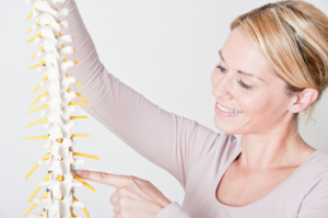 spine in back pain